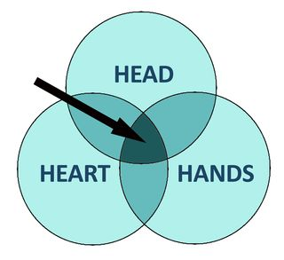 Head heart hands copy